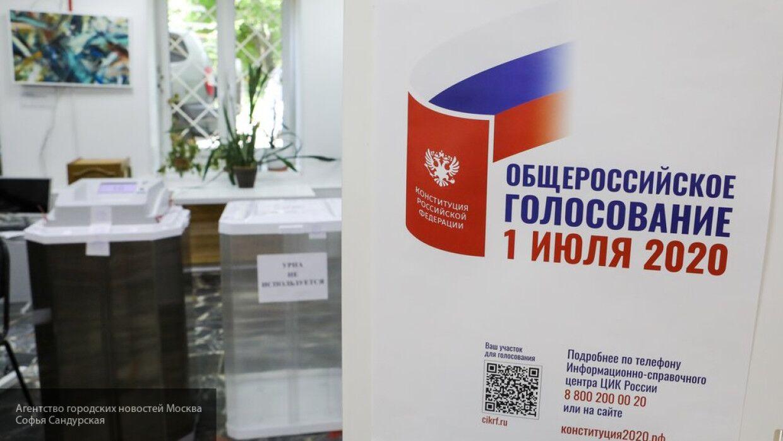 Член ЦИК РФ Шевченко прокомментировал вмешательство Запада в голосование по Конституции