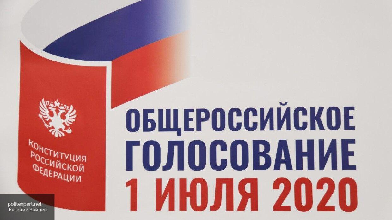 Противники поправок к Конституции РФ в Петербурге провоцируют сотрудников полиции