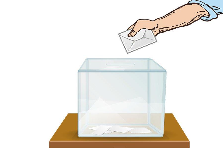 ЦИК объяснил закон о дистанционном голосовании
